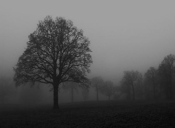 Black&White_meny fotokoncept